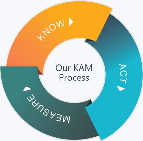 KAM Process